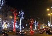 Trees,Holiday,New Years Day,New Year's Gift,Light, Lightning, Illumination,Night,Civic Center,Tbilisi