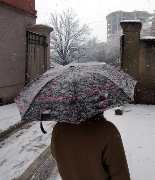 Snows, Snowing,Snow-fall,Umbrella,Man,,Weather-bureau,Winter